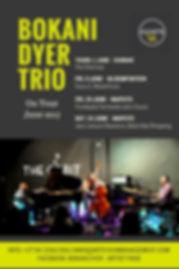 BOKANI DYER TRIO - Tour poster.jpg