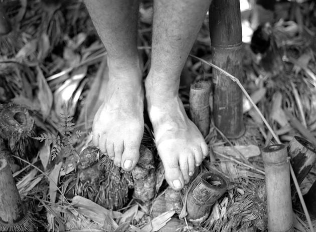 Miro's Feet