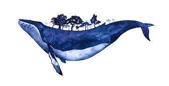 Whaleborne.jpg