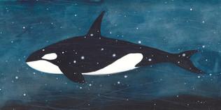 The Sky Whale IX
