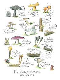 Pretty Bonkers Mushrooms