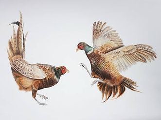 Dancing Pheasants Original.jpg