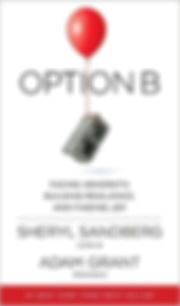 optionb-book.jpg
