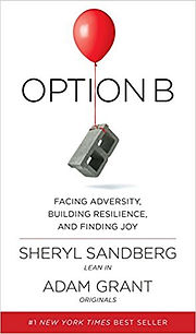 optionb-book.jpg