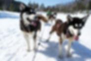 balade-17-mars-2009-011-630x422.jpg