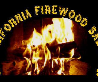 CFS Fireplace