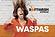 carwash_waspas_voorzijde.png