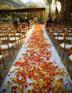 autumn wedding aisle.jpg