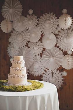 wedding winter theme ideas.jpg