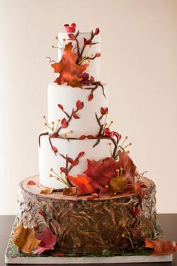autumn wedding cake 3.jpg