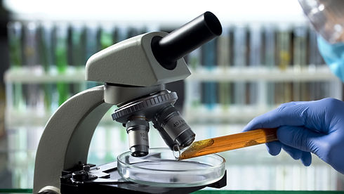 Manuka-Honey-Research-NZ.jpeg