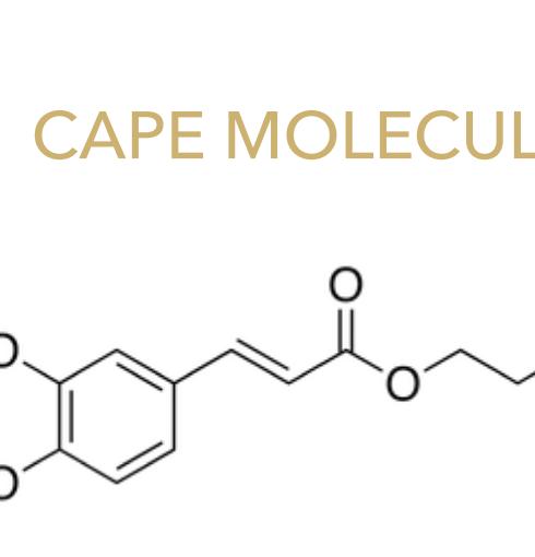 CAPE molecule.png