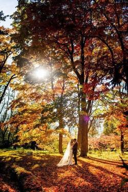 autumn wedding advanage.jpg