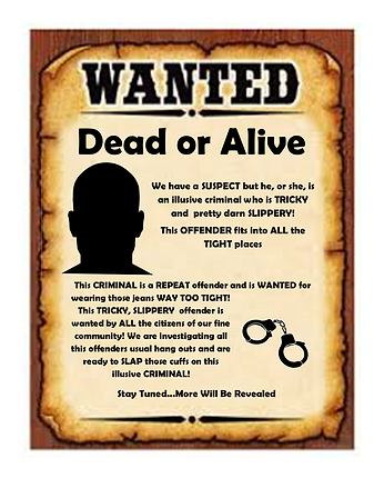 Wanted Poster 1.png