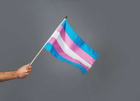 waving-transgender-pride-flag.jpg