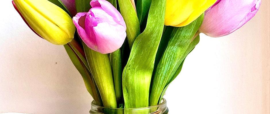 Tulips - Jam Jar