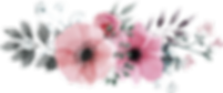 flower-4329170_960_720.png