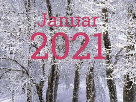 Januar 2021 - Qualität des Monats