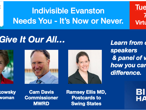 October 2020 Meeting: IE Needs You -It's Now or Never!