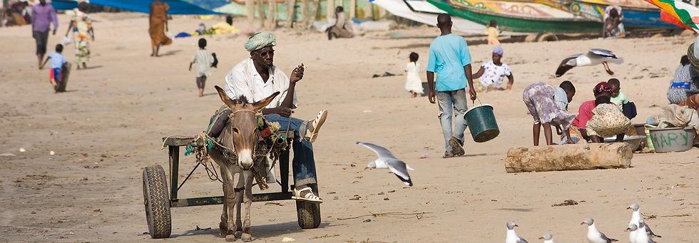 babtou_gambia_beach.jpg