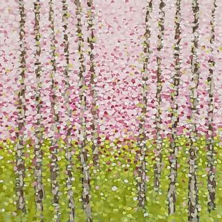 birchwood (spring) SOLD