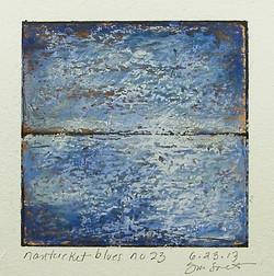 6.23.13 nantucket blues no 23.JPG