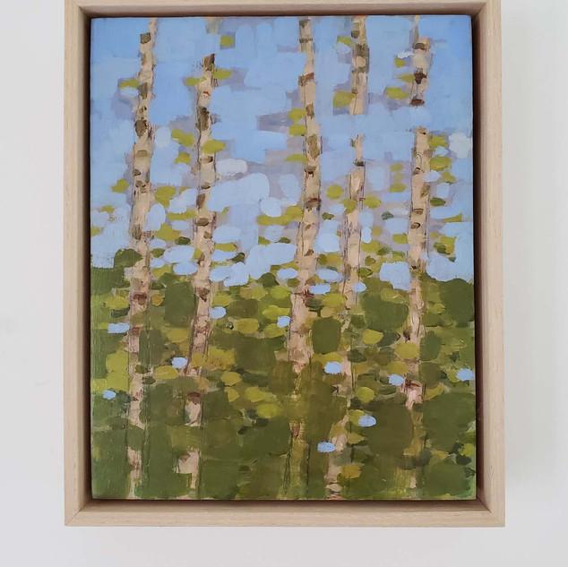 five birches SOLD