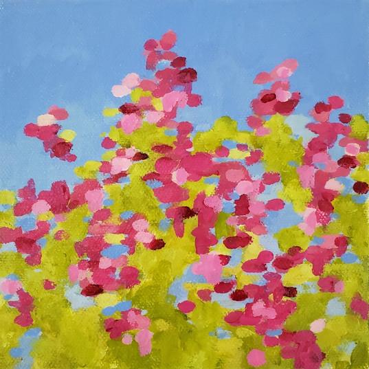 'meadow flowers'