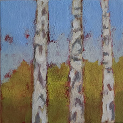 'small birches' full view