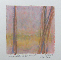 1.17.13 winterwood mist no 6.JPG