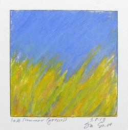 9.8.13 late summer grasses