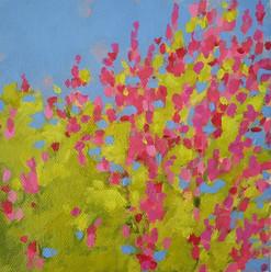 'meadow blooms'