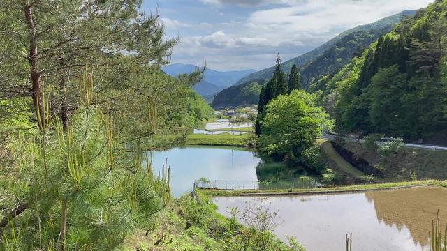 谷の奥からの風景