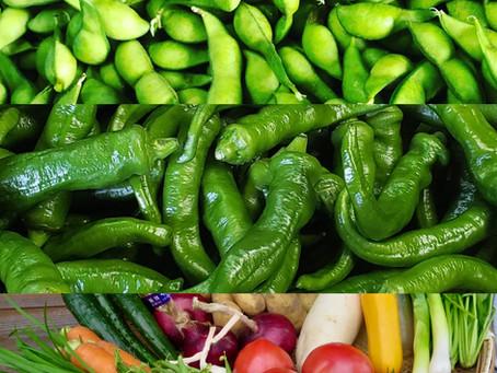 夏野菜がうまい!