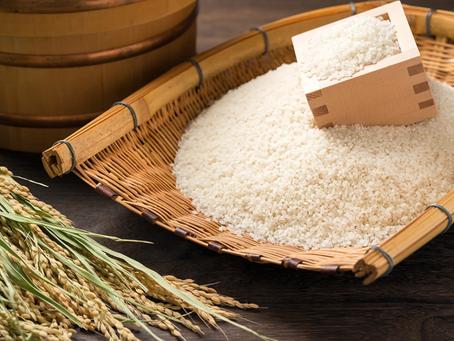 主食のお米