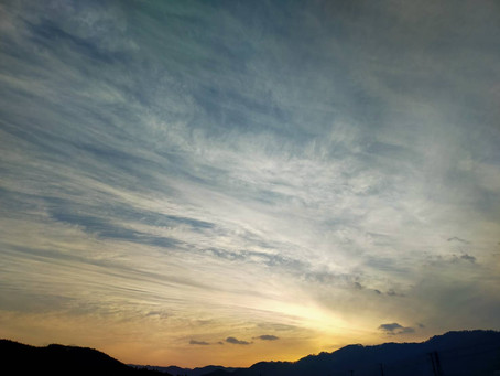 福知山城とお米