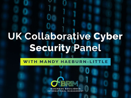 Mandy Haeburn-Little joins panel discussion on UK Collaborative Cyber Security Policing Model