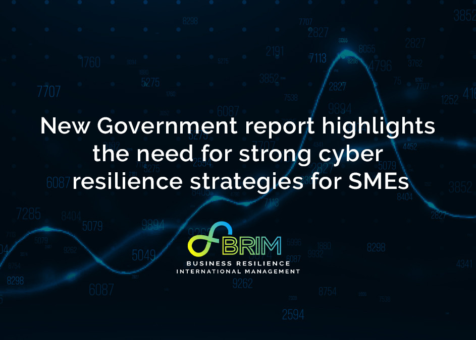 BRIM cyber resilience small or medium-sized enterprise
