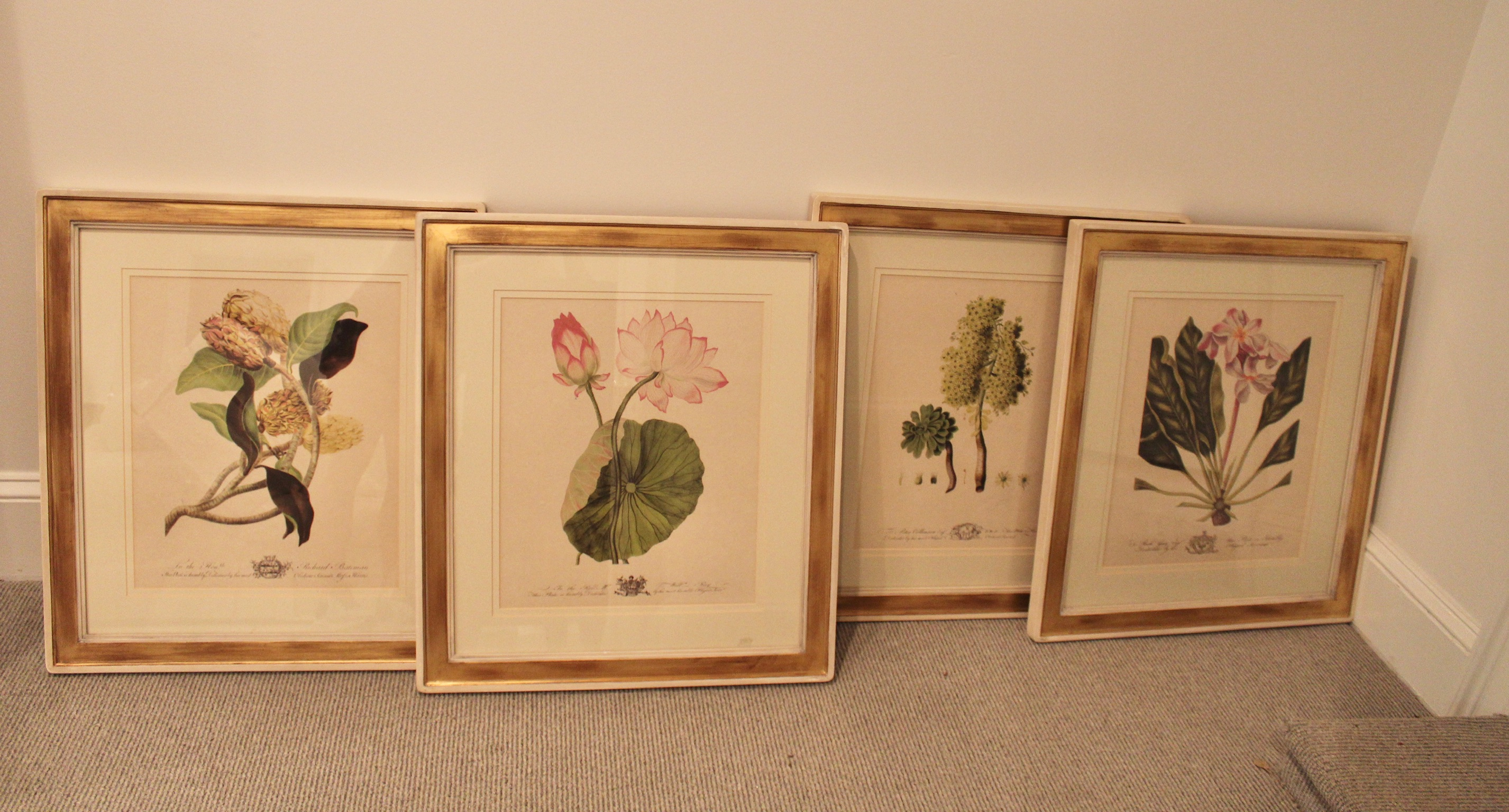 SOLD: Four Botanicals