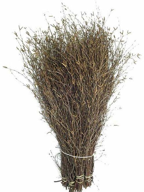 Birkenzweige natur Bund ca. 40 cm