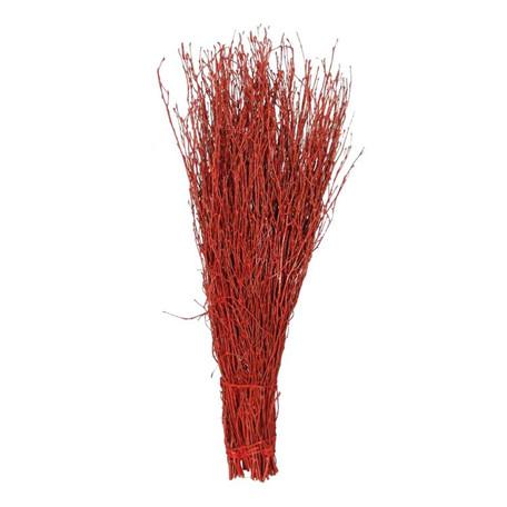 Birkenzweige gefärbt