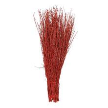 Branches de bouleau, colorées