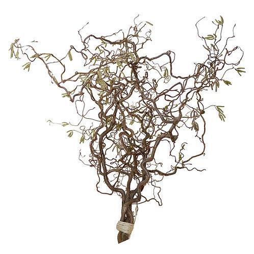 Korkenzieherweide für Osterbaum gross