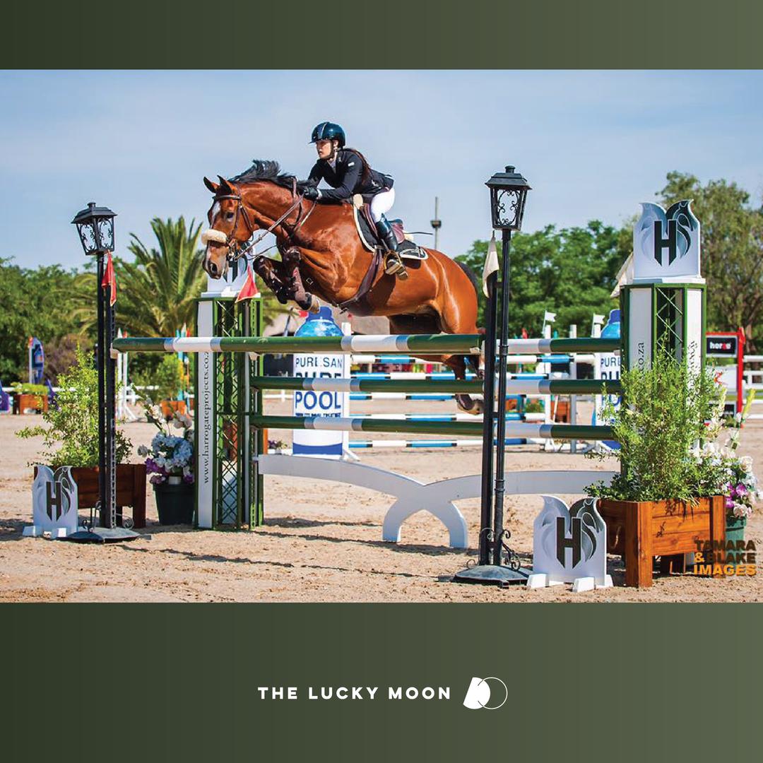 Harrogate Equestrian Projects Jump
