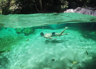 Você tem nadado e mergulhado fundo rumo ao seu objetivo?