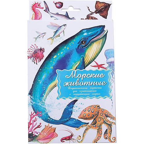 Дидактические карточки Морские обитатели Маленький гений