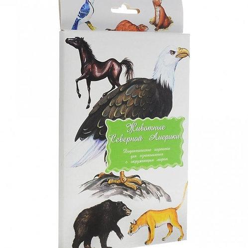 Дидактические карточки Животные Северной Америки Маленький гений