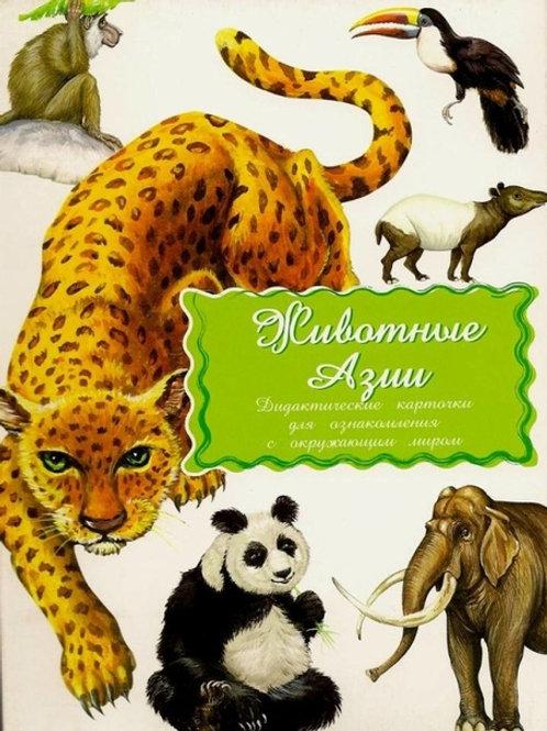 Дидактические карточки Животные Азии Маленький гений