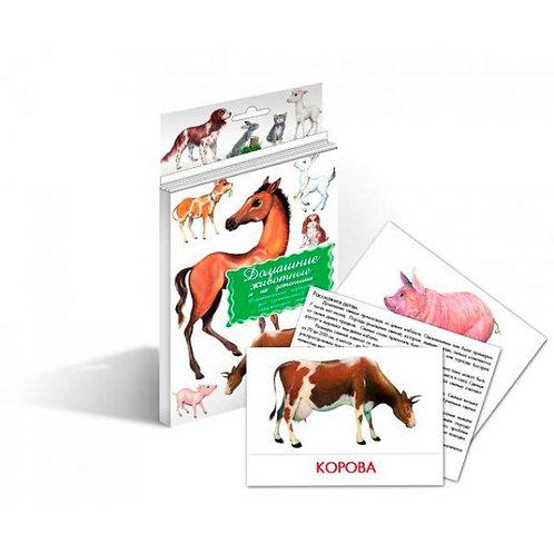 Дидактические карточки Домашние животные и их детеныши Маленький гений