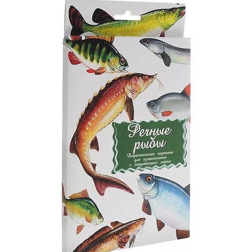 Дидактические карточки Речные рыбы Маленький гений
